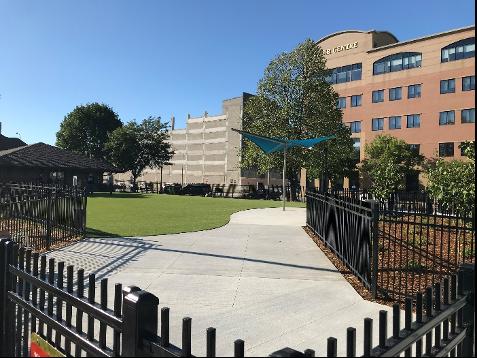 Kirby Dog Park artificial turf resurfacing - Corner view